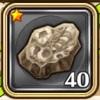 ヴァポラムの化石